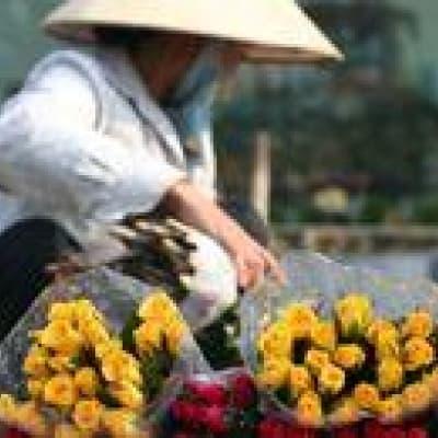 Marché de fleurs de Hanoï