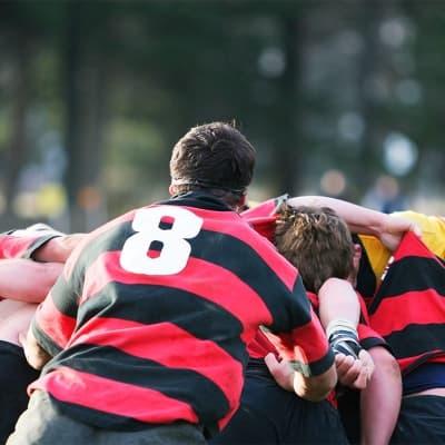 Assister à une rencontre de rugby !