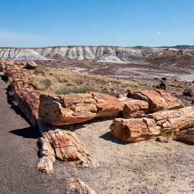 Exploration de la Petrified Forest