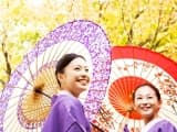 Le Japon aux mille couleurs