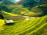 Le Vietnam à l'infini - vietnam - circuit - sur-mesure - marcovasco - sejour