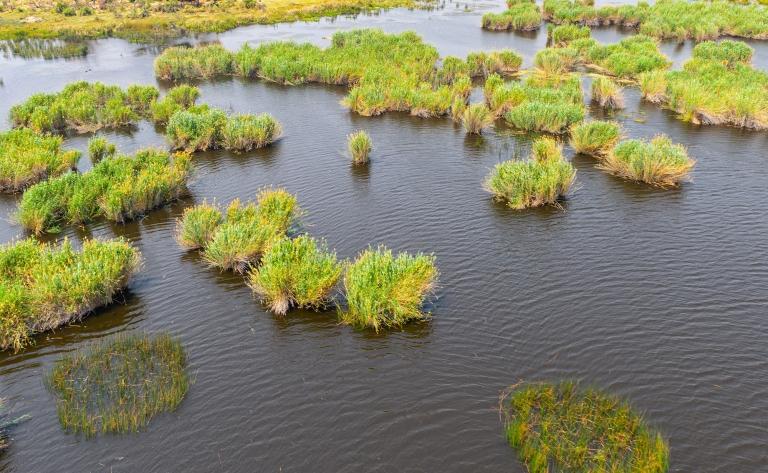 Survol du Delta Okavango en Hélicoptère