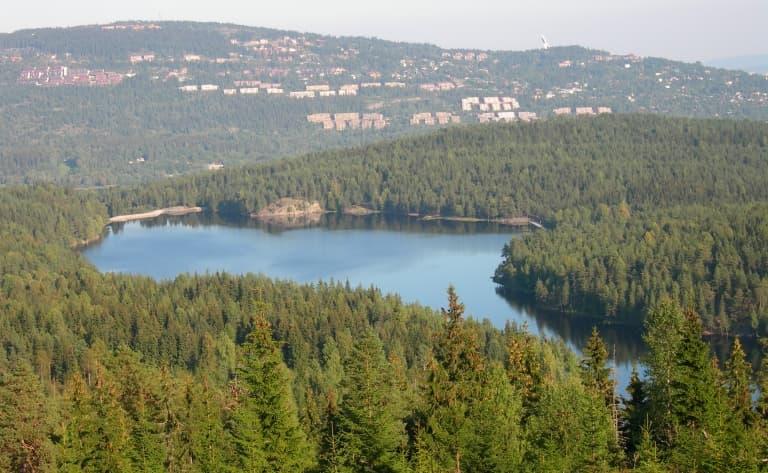 Journée de balade dans la forêt d'Oslo Marka