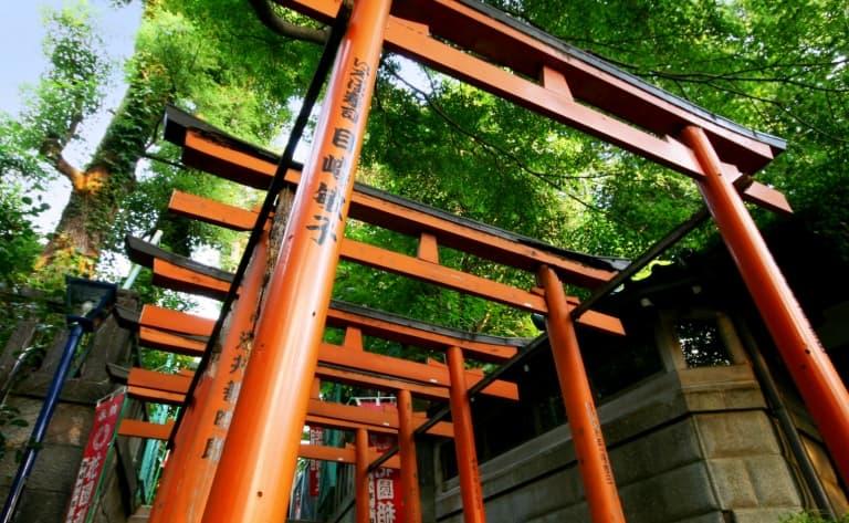 Visite de Kyoto le matin