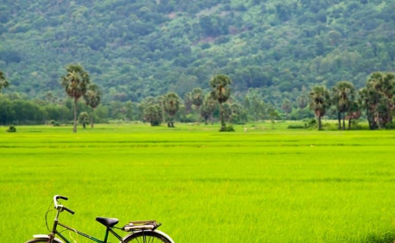 Vélo au cœur de la baie d'Halong terrestre