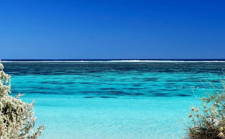 Exploration du Ningaloo Reef