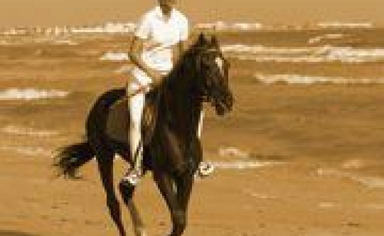 Randonnée à cheval au Kenya