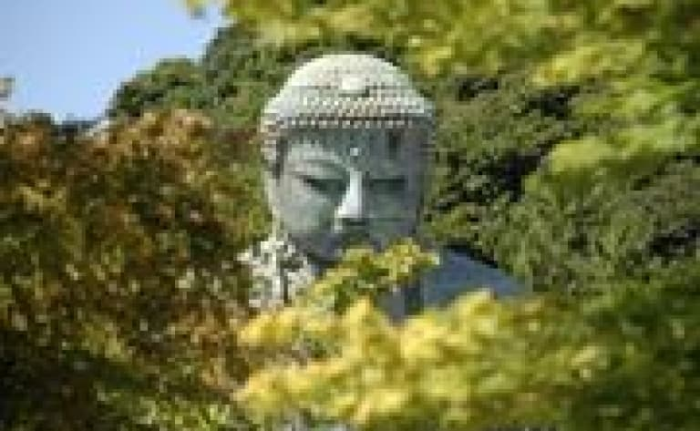 Guided tour of Kamakura
