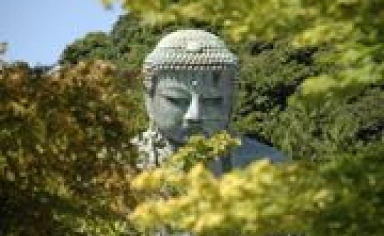 Guided tour of Kamakura