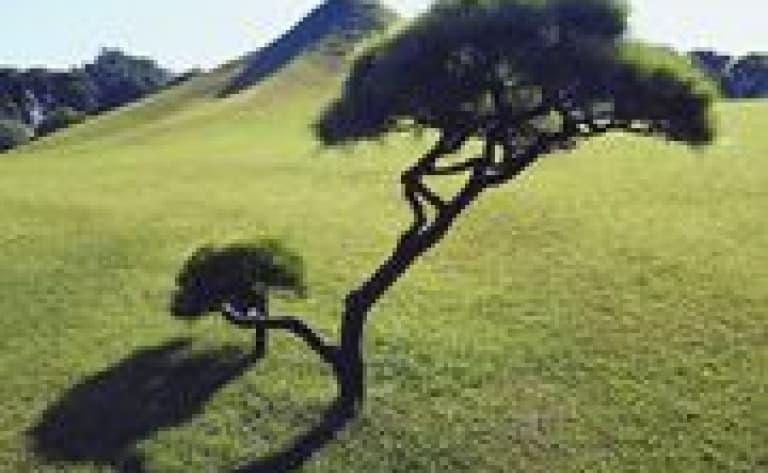 Visit the main natural sites of Kyûshu