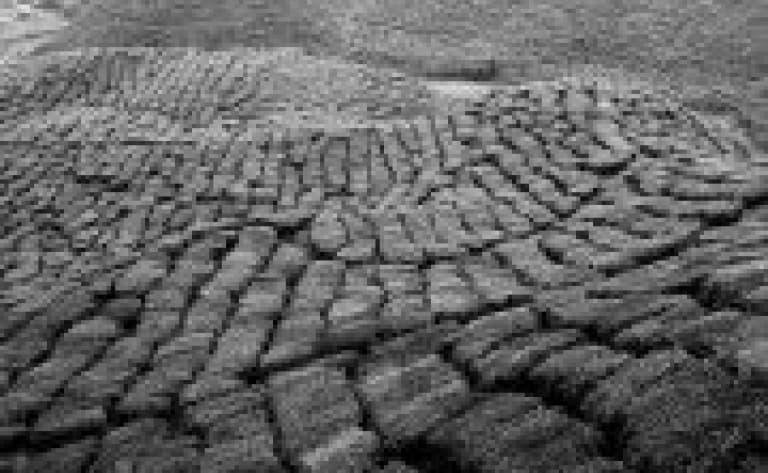 Tabin mud volcano