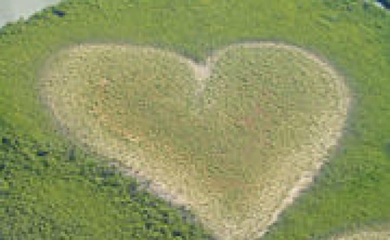 Le cœur de Voh