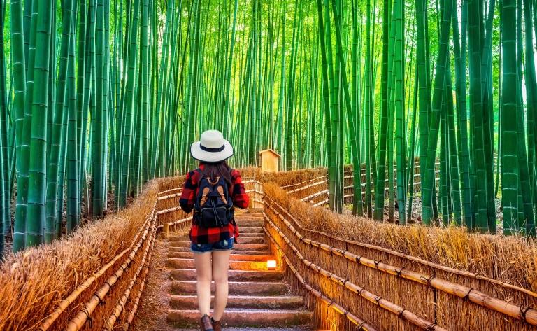 Visite d'Arashiyama et Sagano