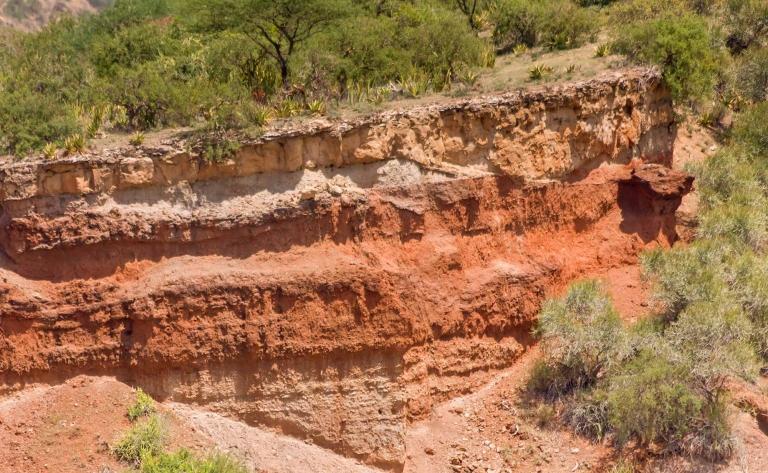 Marche dans les Gorges d'Olduvai