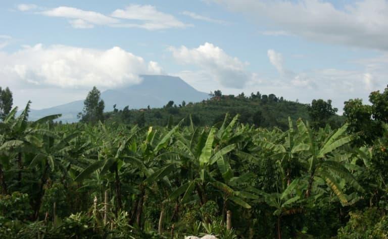 Route vers la forêt impénétrable de Bwindi-5h.