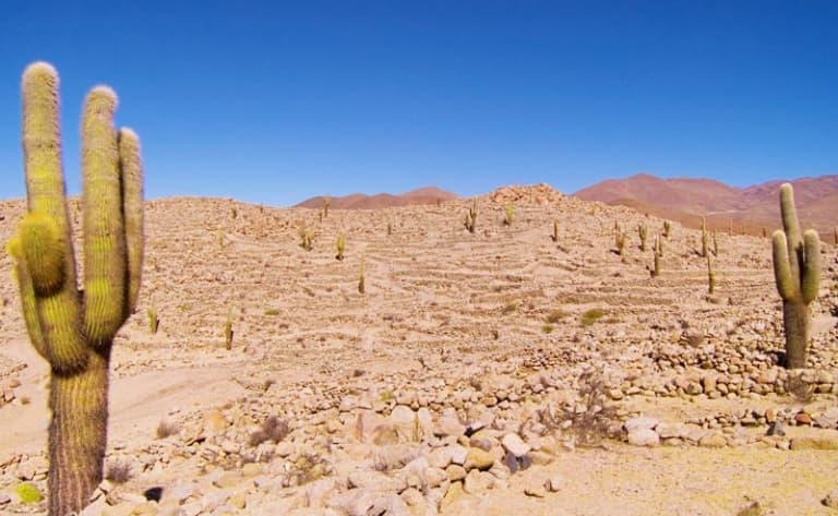Site archéologique de Quilmes