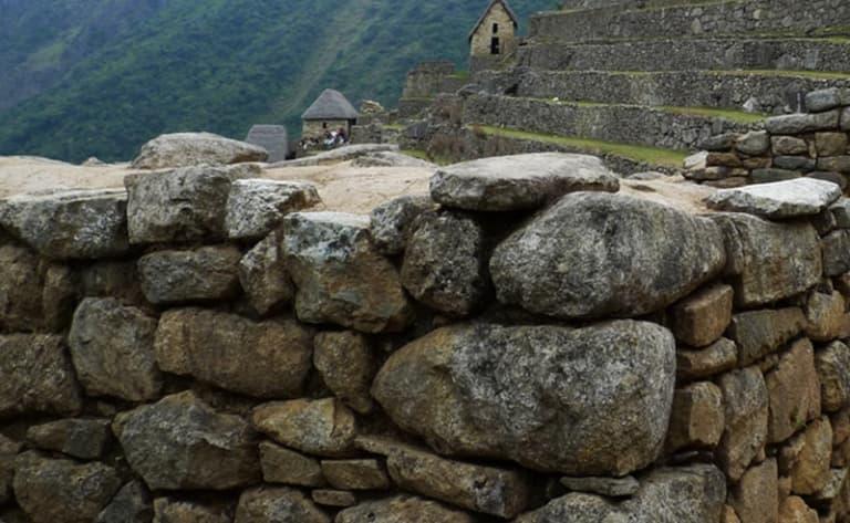 Paysages sauvages de la pampa péruvienne