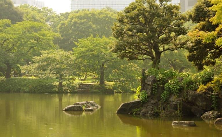 Les canaux de Yanagawa