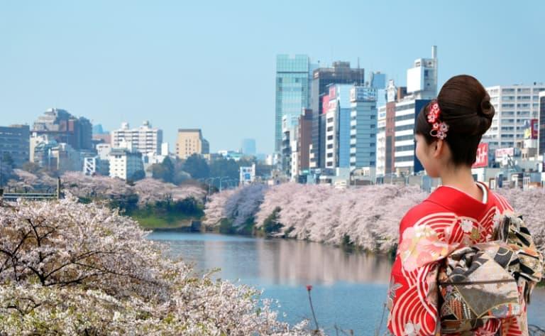 Discover the city, Shinjuku, Harajuku and Shibuya districts and Yoyogi Park