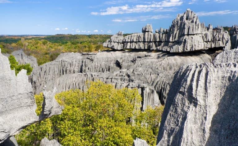 Une Forêt de pierres classée par l'Unesco !