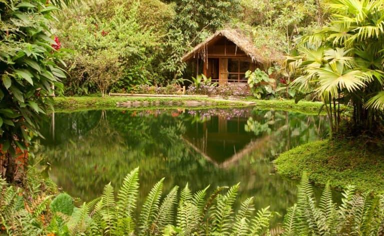 Rencontres en Amazonie