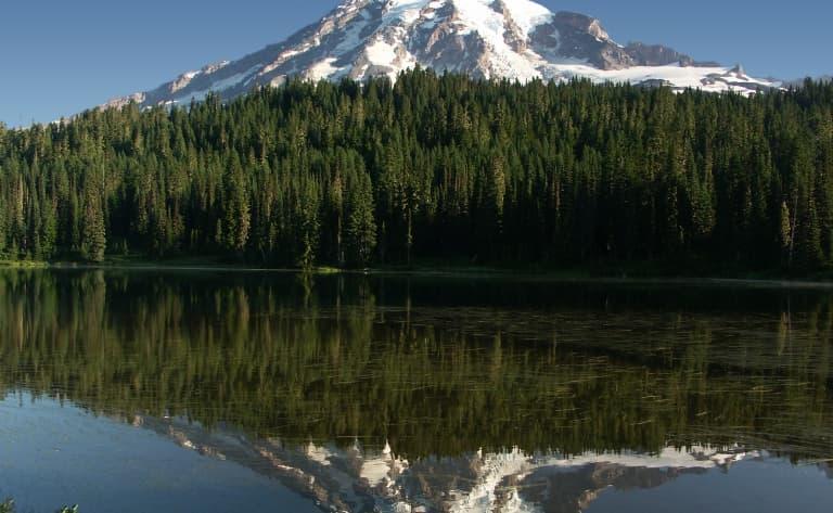 Seattle autrement : à la conquête du Mont Rainier