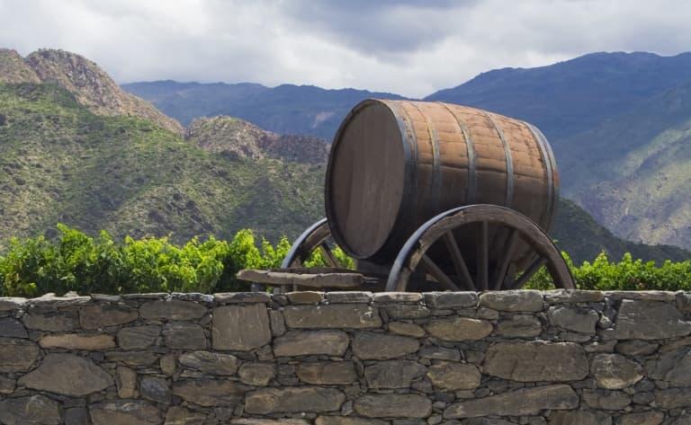 Découverte de Salta et dégustation de vin