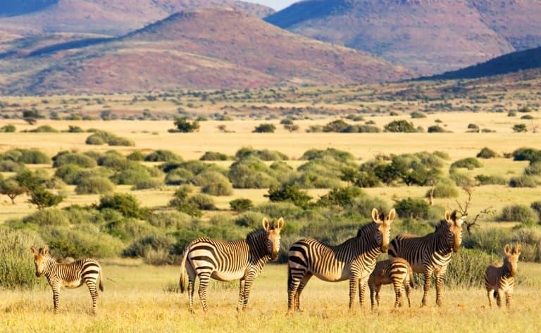 Rencontre avec les Himbas