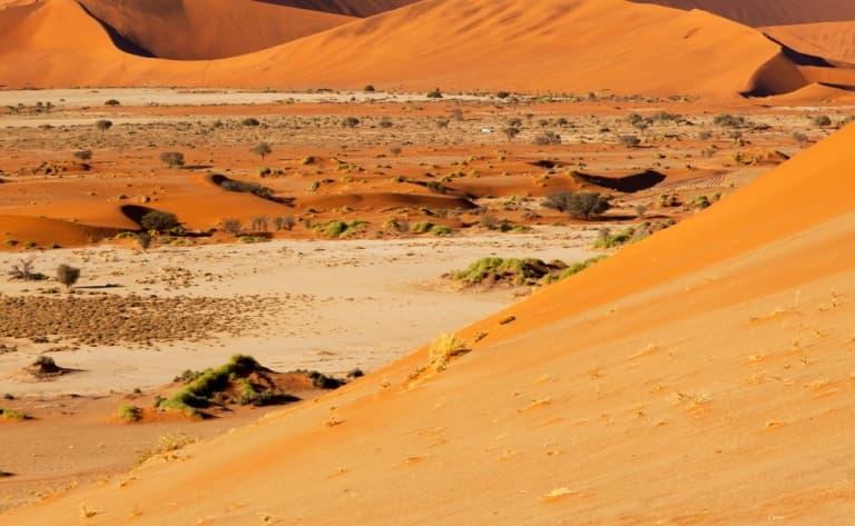 Immersion dans le Désert du Namib (370 km)