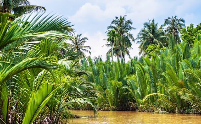 Croisière sur le Mékong et retour à Ho Chi Minh Ville