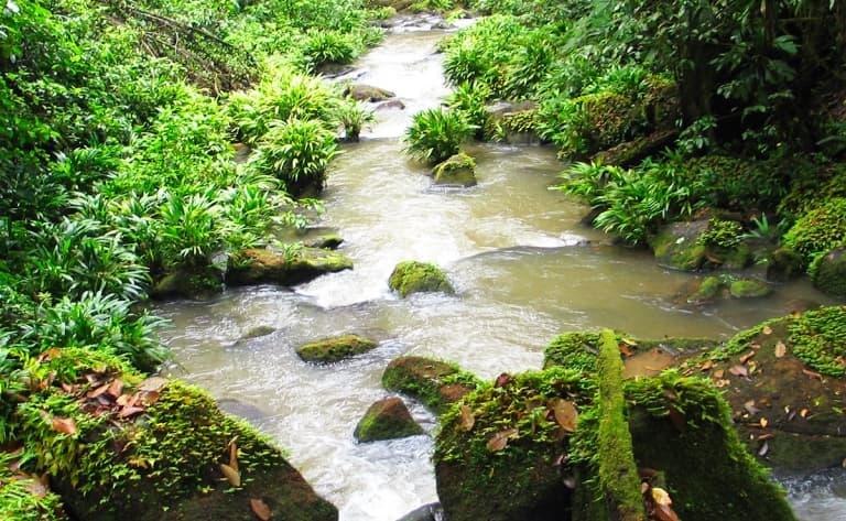 Dernier jour au Costa Rica…