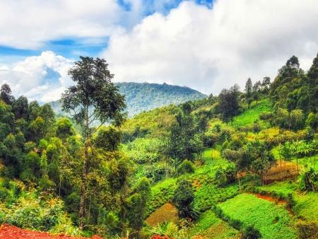 Première randonnée le long du Congo Nile Trail