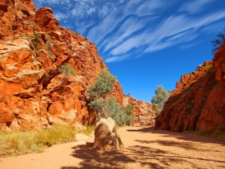 Au cœur de l'outback