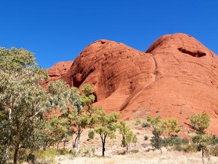 De l'outback aux rives du Pacifique