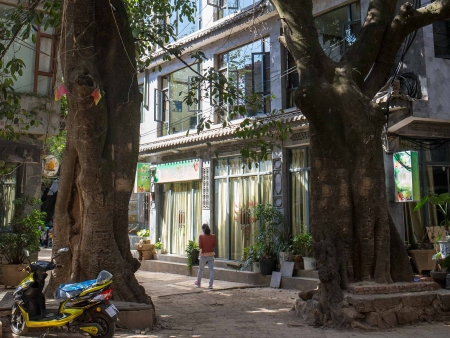 Découverte du vieux Shanghai