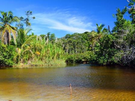 La rivière Bebedero