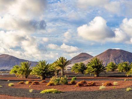 Timanfaya, joyau volcanique de Lanzarote!