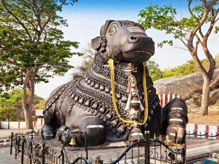 """Mysore, la """"ville des parfums"""""""