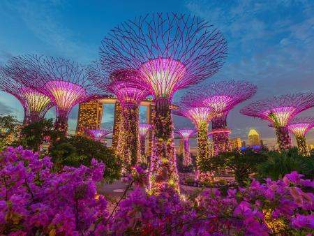 Singapour futuriste