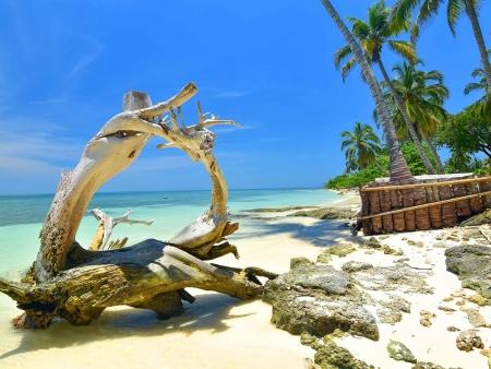 L'île paradisiaque de Mucara
