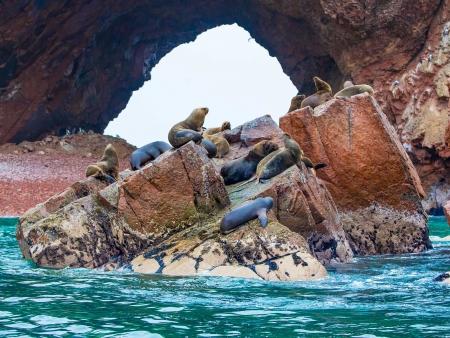 Paracas, Ica, nazca, le long de la côte pacifique