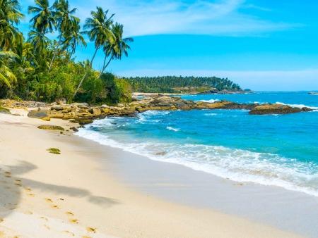 Safari et plages