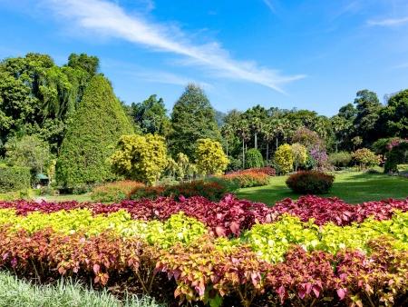 Les plus beaux jardins d'Asie !