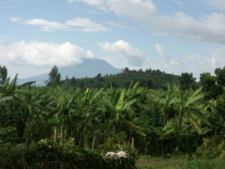 Descente du volcan