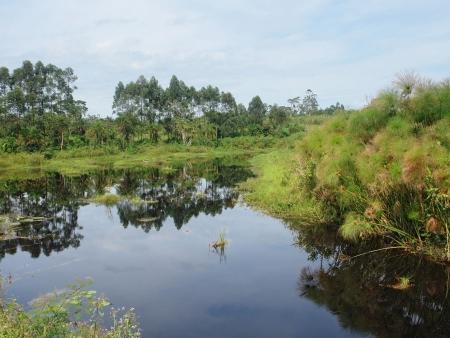 A l'Est de l'Ouganda