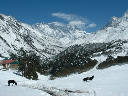 Vers le glacier Khumbu