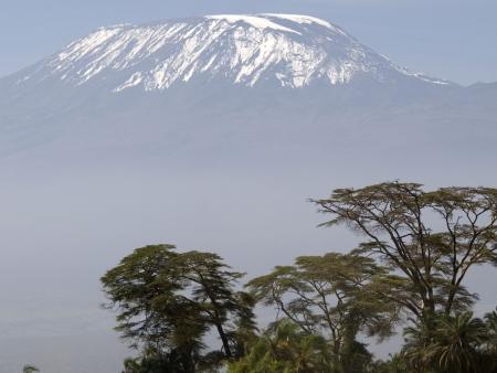 Randonnée au pied du Mont Kenya