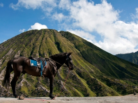 Caldeira du Mont Bromo