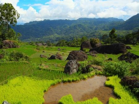 Visite des principaux sites culturels dans les villages alentours