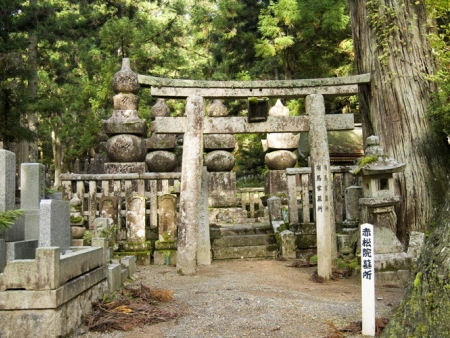 Discover  Mount Koya and its 110 temples
